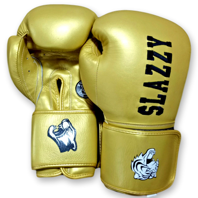 Gloves Classic (Multi Colour) Shawn Boxing Gloves