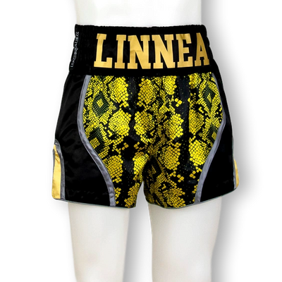 DREAM MTS Ronnie Muay Thai Shorts