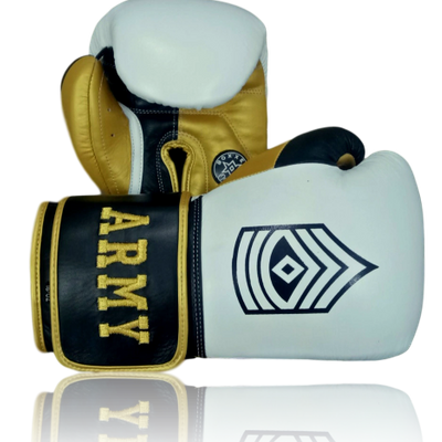 Gloves Classic (Multi Colour) Ryan Boxing Gloves