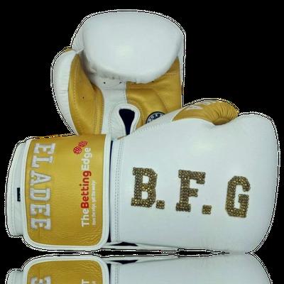 Gloves Classic (Multi Colour) Daniel Boxing Gloves