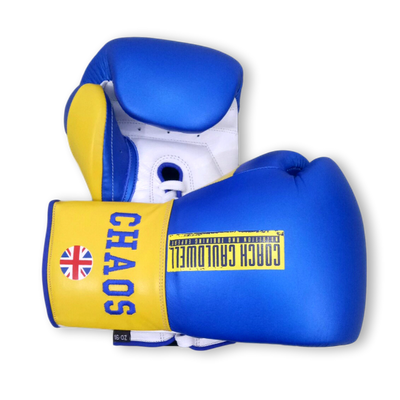Gloves Laced / Ridged Phil Boxing Gloves