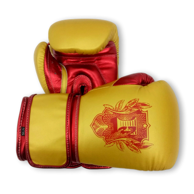 Gloves Classic (Multi Colour) MarQeal Boxing Gloves