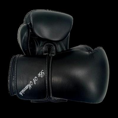 Gloves Classic (Multi Colour) Robert Boxing Gloves