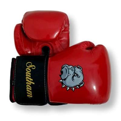 GLOVES EASY (2 colour) Siobhon Boxing Gloves