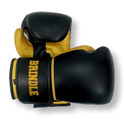 Gloves Classic (Multi Colour) Janina Boxing Gloves