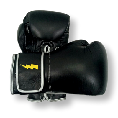 GLOVES EASY (2 colour) Andrea Boxing Gloves