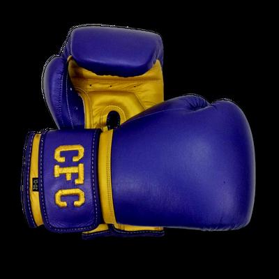 Gloves Classic (Multi Colour) Jeannine  Boxing Gloves