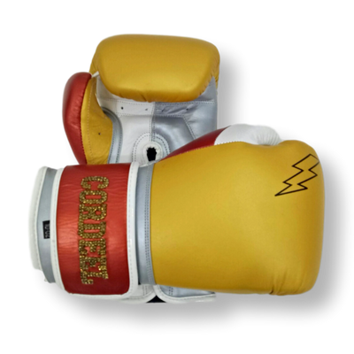 Gloves Classic (Multi Colour) Amaury Boxing Gloves