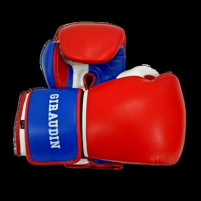 Gloves Classic (Multi Colour) Matthew Boxing Gloves