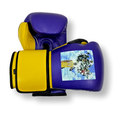 Gloves Classic (Multi Colour) Terrell Boxing Gloves