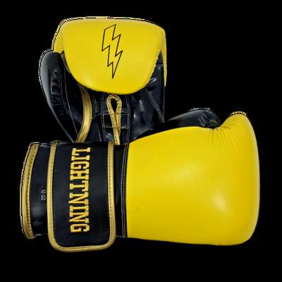 Gloves Classic (Multi Colour) Brendon Boxing Gloves