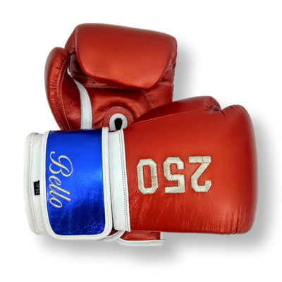 Gloves Classic (Multi Colour) Federico Boxing Gloves