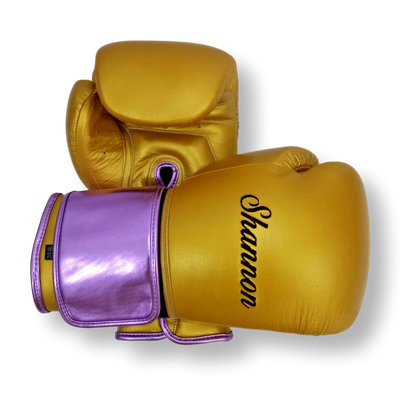 GLOVES EASY (2 colour) Cameron Boxing Gloves
