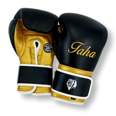 Gloves Classic (Multi Colour) Ahmed Boxing Gloves