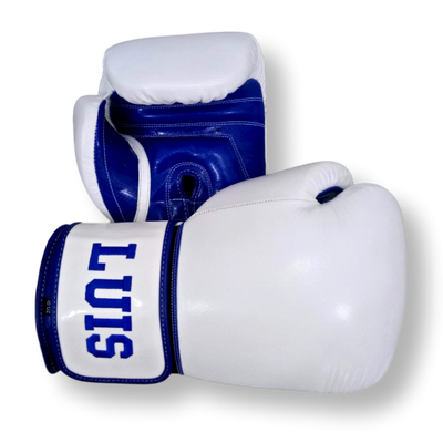 Gloves Classic (Multi Colour) Shelby Boxing Gloves