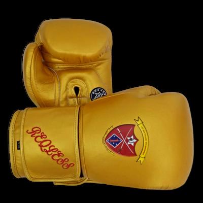 Gloves Classic (Multi Colour) Rasaq Boxing Gloves