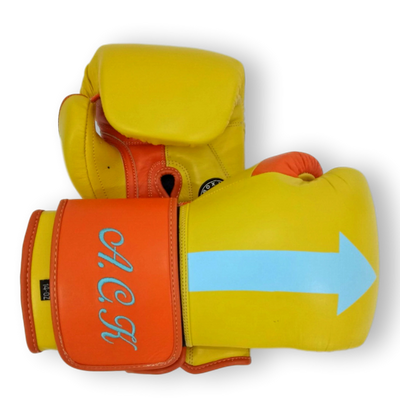 Gloves Classic (Multi Colour) Max Boxing Gloves