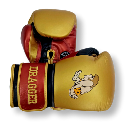 Gloves Classic (Multi Colour) Lewis Boxing Gloves
