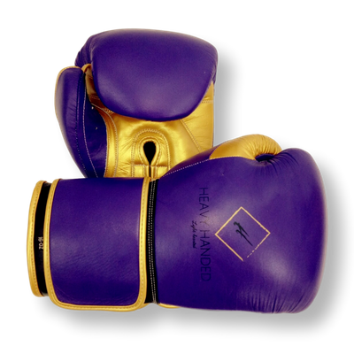 Gloves Classic (Multi Colour) Anthony Boxing Gloves