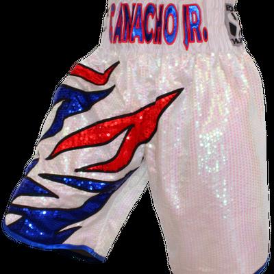Roy Jones BX (Angel) Custom Boxing Shorts & Trunks